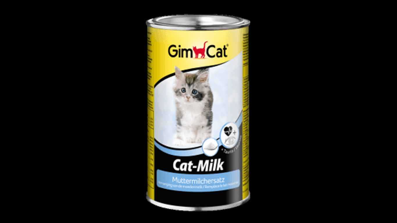 Gimborn GimCat