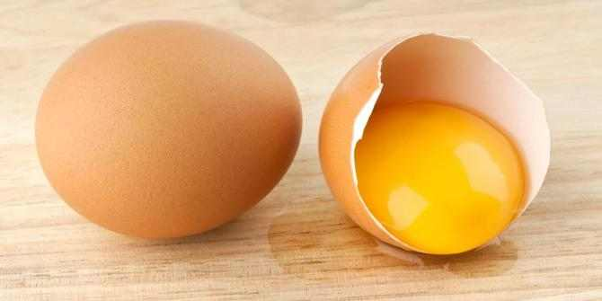 kuning telur ayam