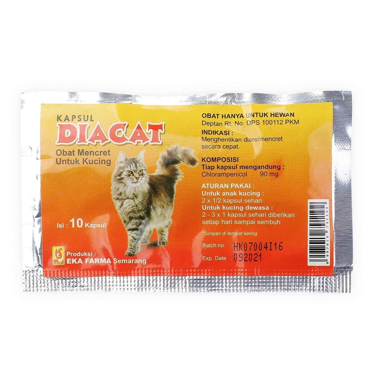 obat diare untuk kucing