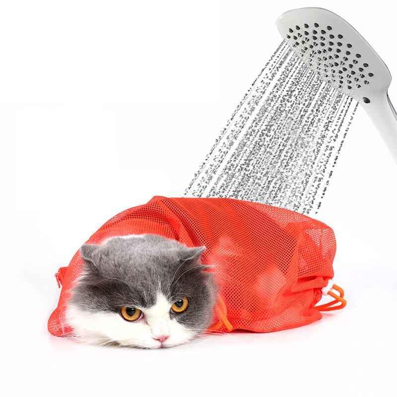 tips grooming kucing