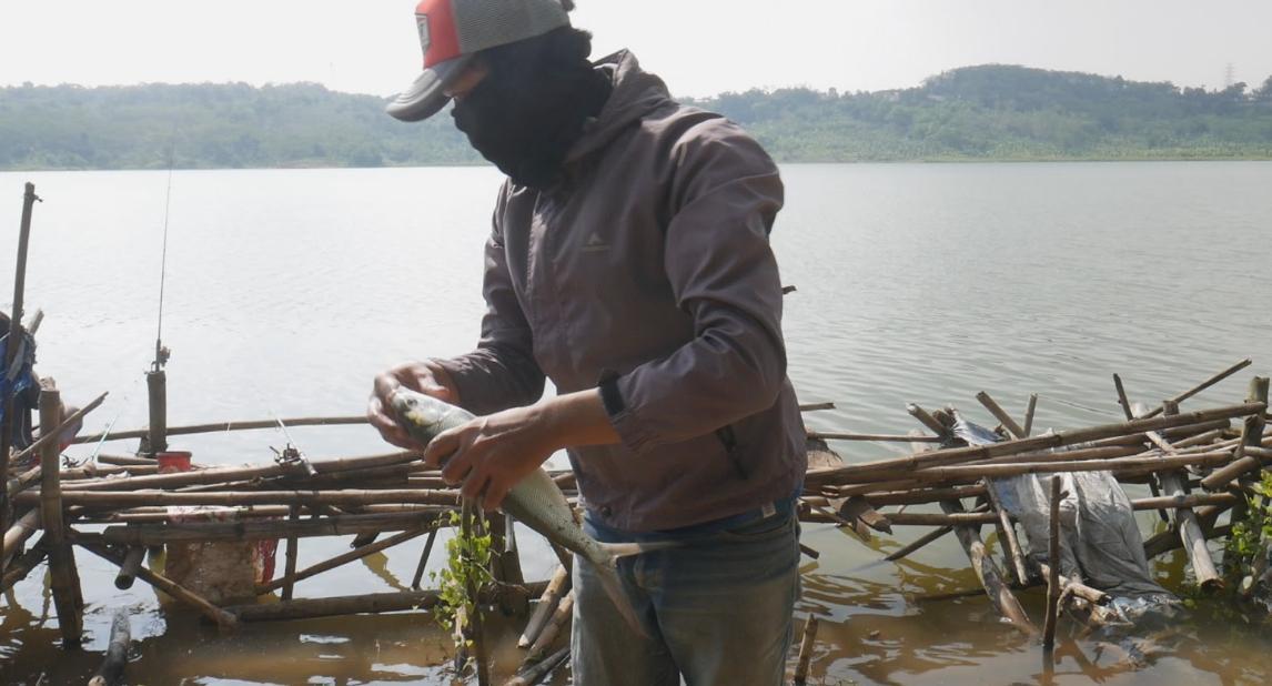umpan mancing ikan bandeng di waduk